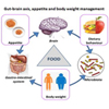 Foods ingredients for appetite control and body weight management